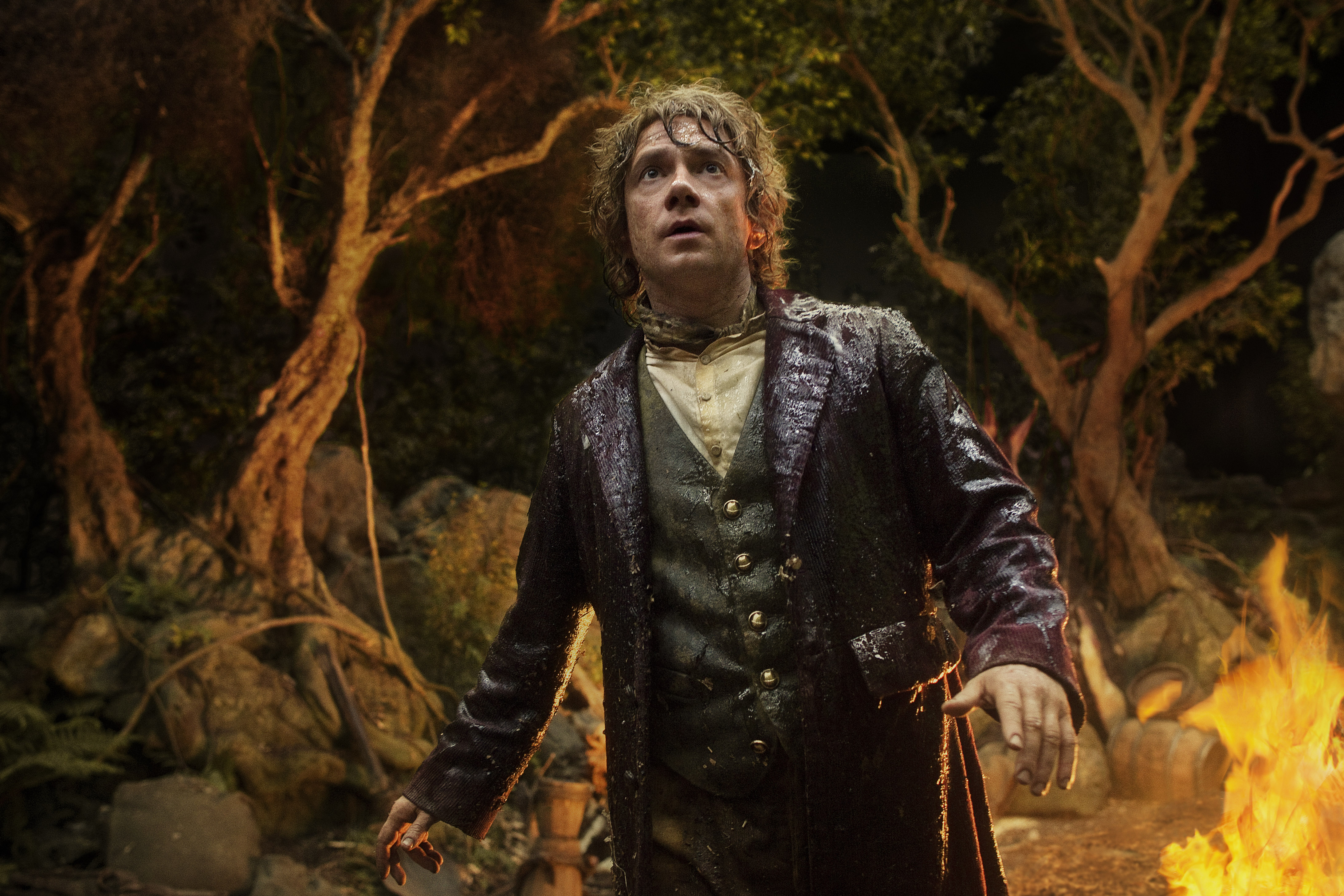 The Hobbit: An Unexpected Journey (2012), directed by Peter Jackson and starring Martin Freeman and Ian McKellen.